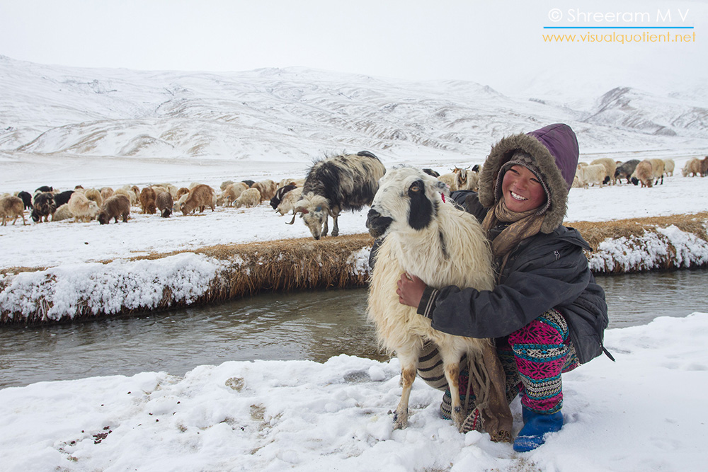 Shepherd in Ladakh in winter