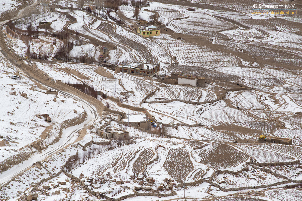 Lines and curves - A snowy village in Ladakh in winter